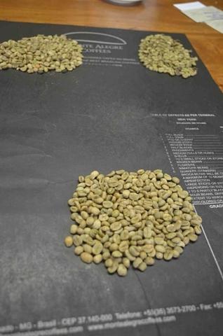 Grading w Brazylii -W siedzibie brazylijskiej firmy Monte Alegre kawa poddawana jest gradingowi. Grading jest procedurą klasyfikowania kawy w celu ustalenia jej typu, a co za tym idzie ceny, oraz stwierdzenia, czy nadaje się na eksport, czy tez należy sprzedać ją na rynku zenętrznym. Polega na oddzieleniu i posortowaniu ziaren z defektami od tych pozbawionych wad. W Brazylii powszechnie stosownae są specjalne czarne maty do gradingu, które ułatwiają rozpoznawanie defektów.