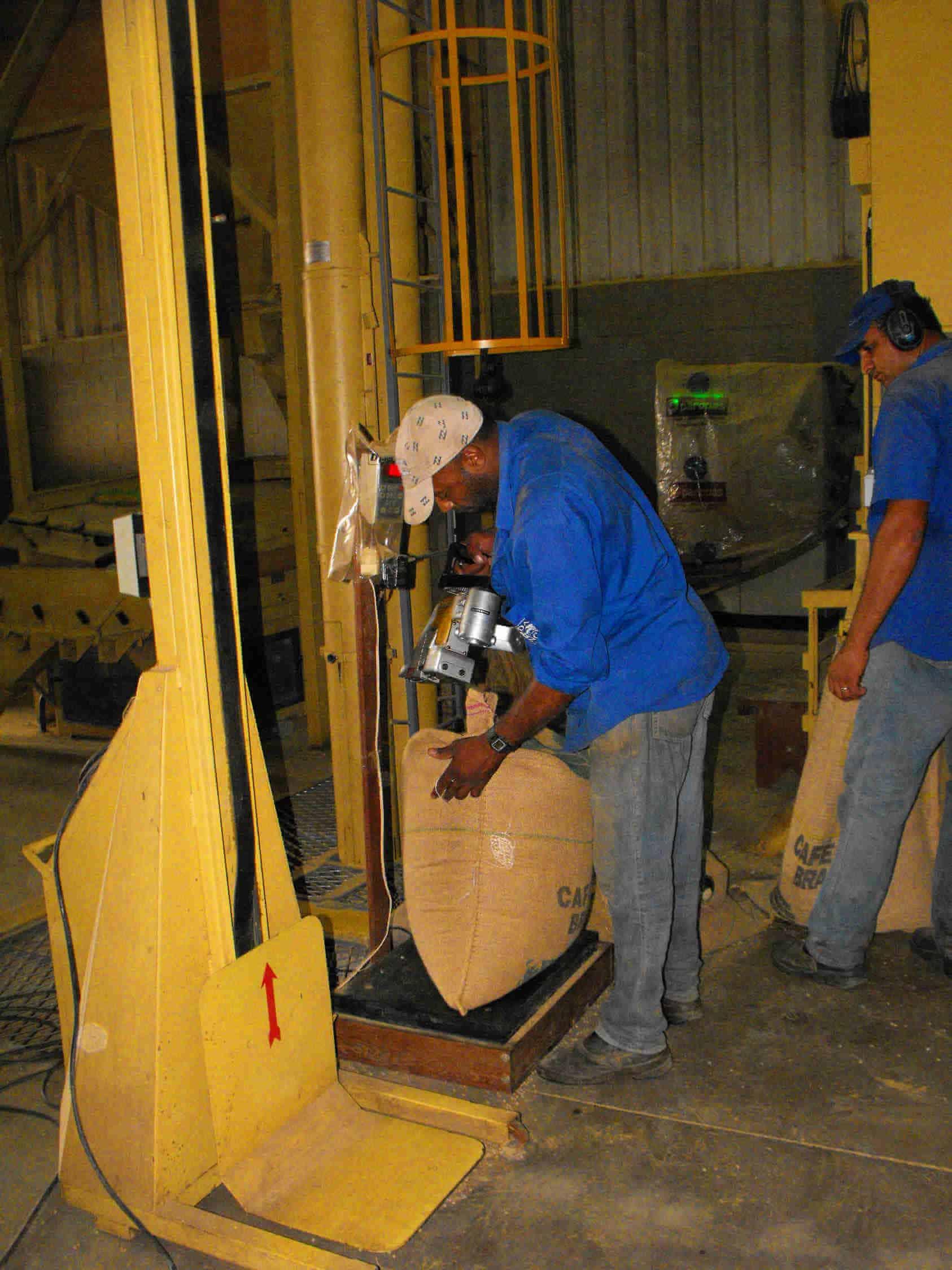 Zbiory kawy w Brazylii – Po poddaniu ziaren sortowaniu, obróbce i wysuszeniu pozostaje już tylko zaszyć przygotowane worki.