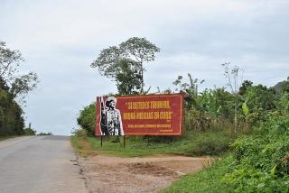 W drodze na plantację